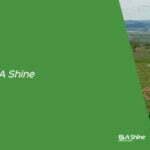 Actiune de ecologizare BLA Shine